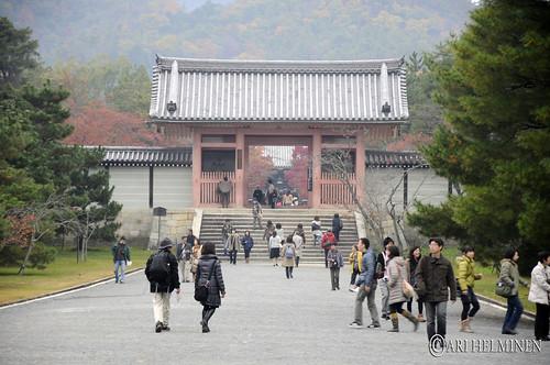 Ninnaji-temple 仁和寺