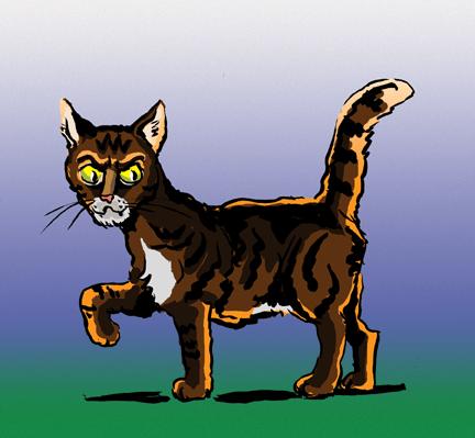 stripedcatcol