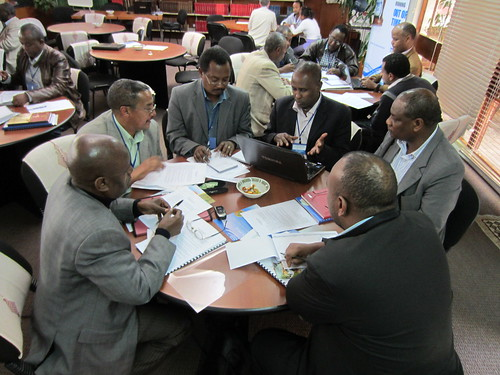 National platform group work (photo credit: ILRI/Ewen Le Borgne)