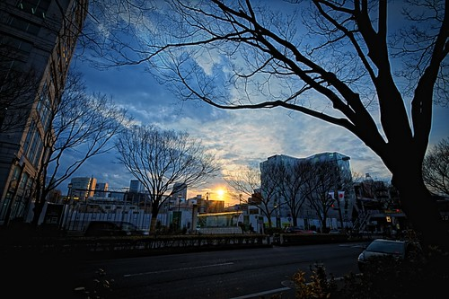 Day 36/366 : Sunset Over Omotesando by hidesax