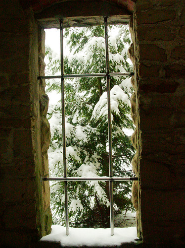 snowy tree through the castle window
