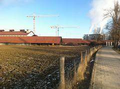 Zwölf2012_Jan3
