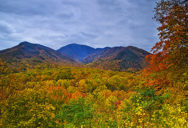 Carlos Campbell Overlook in Great Smoky Mountains  National Park