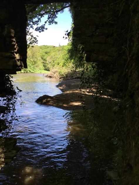 Halsden Wood