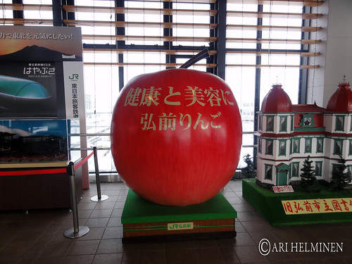 apple of Hirosaki aomori