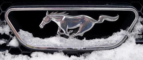 Mustang 2000 - Hagerstown - Winter 2012