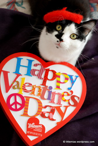 valentine 2-5-2012 3-14-26 PM