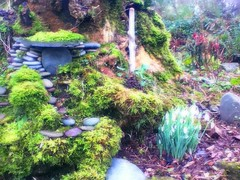 Garden Whimsy by To Ireland...and Back Again