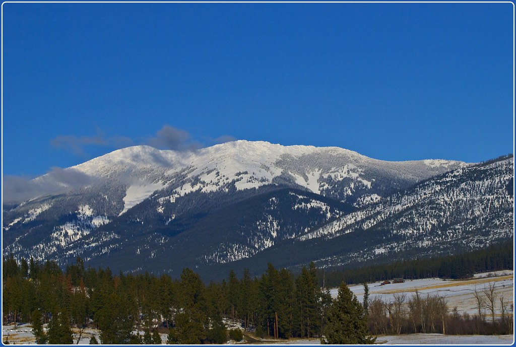 Baldy Mountain