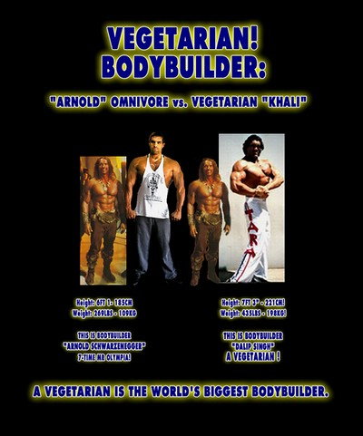 Vegetarian Bodybuilding