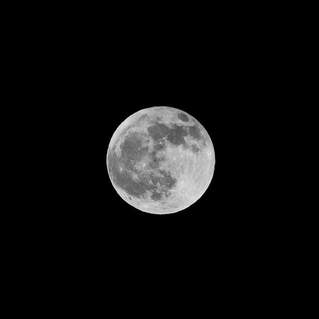 Moon v1