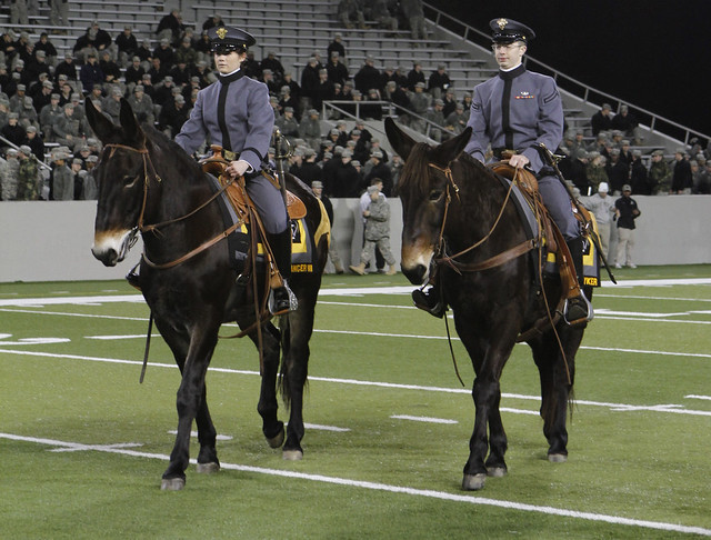 West Point Army Mule Images