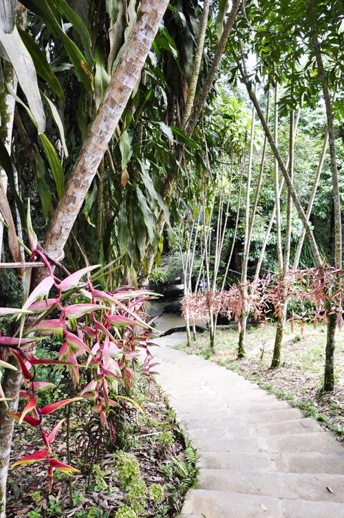 Magic Garden - Thailand, Koh Samui (12 of 42)