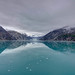 Johns Hopkins Glacier, Alaska