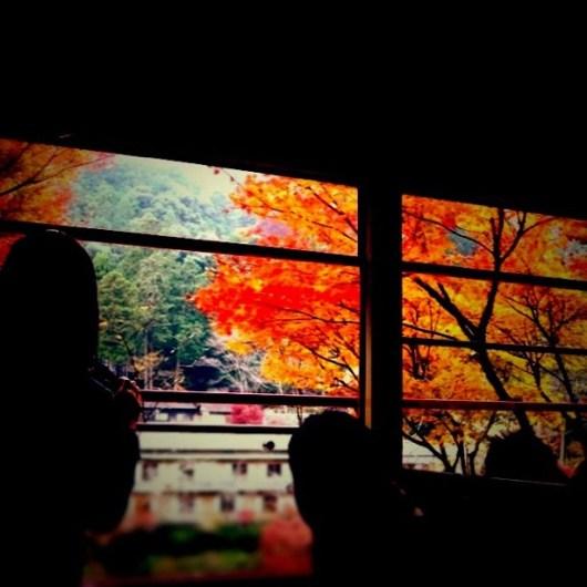 車窓から #PicTool #tiltshiftgen #autumn