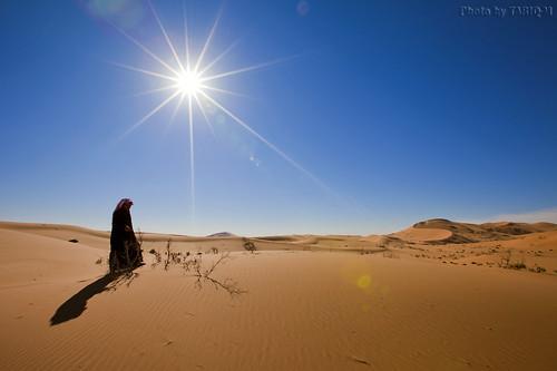 The Desert by TARIQ-M