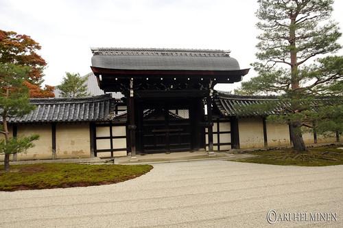 天竜寺 Tenryuji temple 紅葉