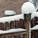 Birdhouse Sno-Fro, February 04, 2012