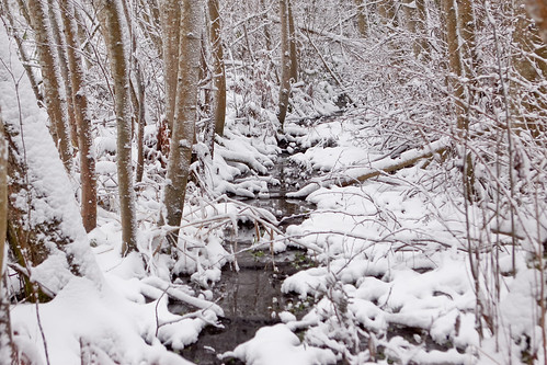 Snow2012-53