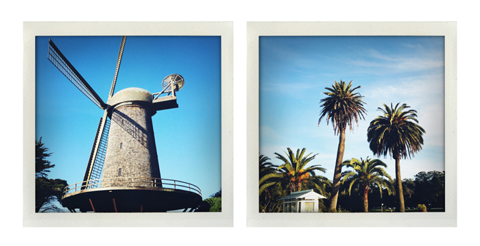 windmill dip