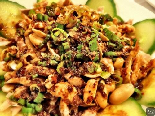 New Szechuan Gourmet  0010