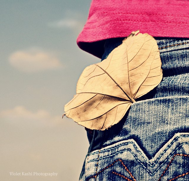 Absolutely creative photography by Violet Kashi
