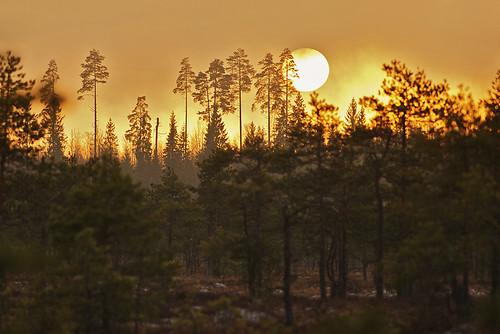 Sunset at three pm by Isoscelez