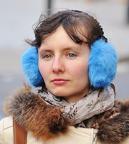 Blue Muffs