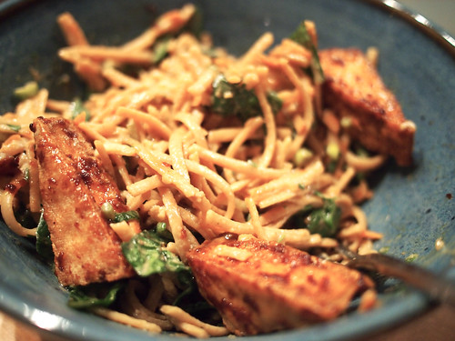 Peanut Noodles with Braised Tofu