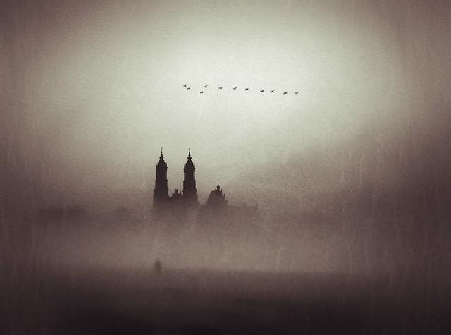 Michał Koralewski: The fog