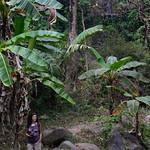 06 Viajefilos en Laos, Vang Vieng  050
