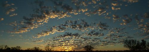 west australian desert panorama by gomagoti