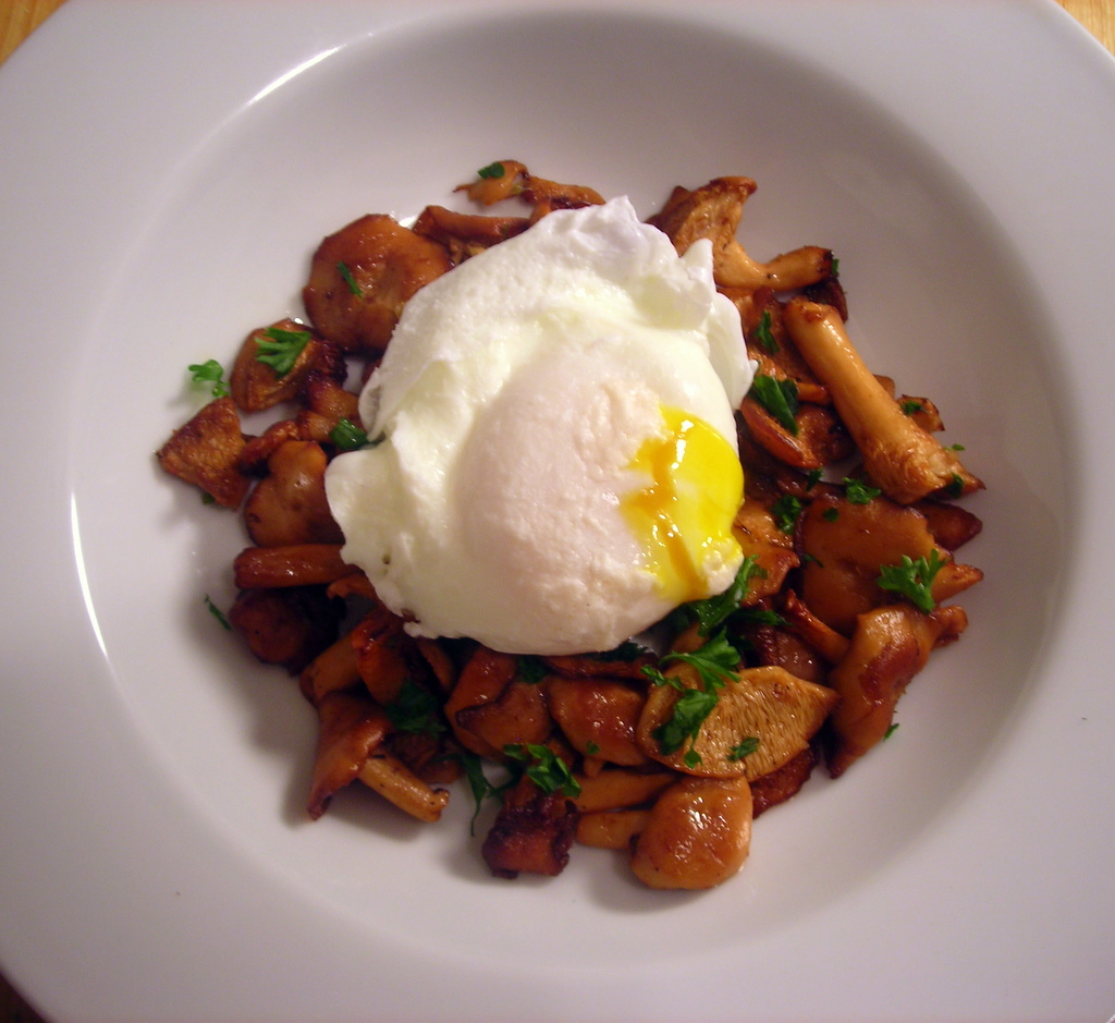 Poached farm egg, with sautéed hedgehog mushrooms, green garlic and parsley