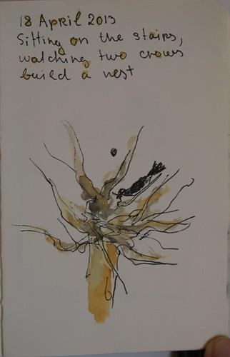 Sketch of bird building a nest