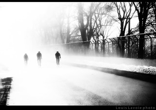 Vive la brouillard pour faire de belles photos (1/6)