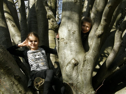 Posing in the 'climbing tree'.