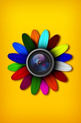 Camera Roll-803