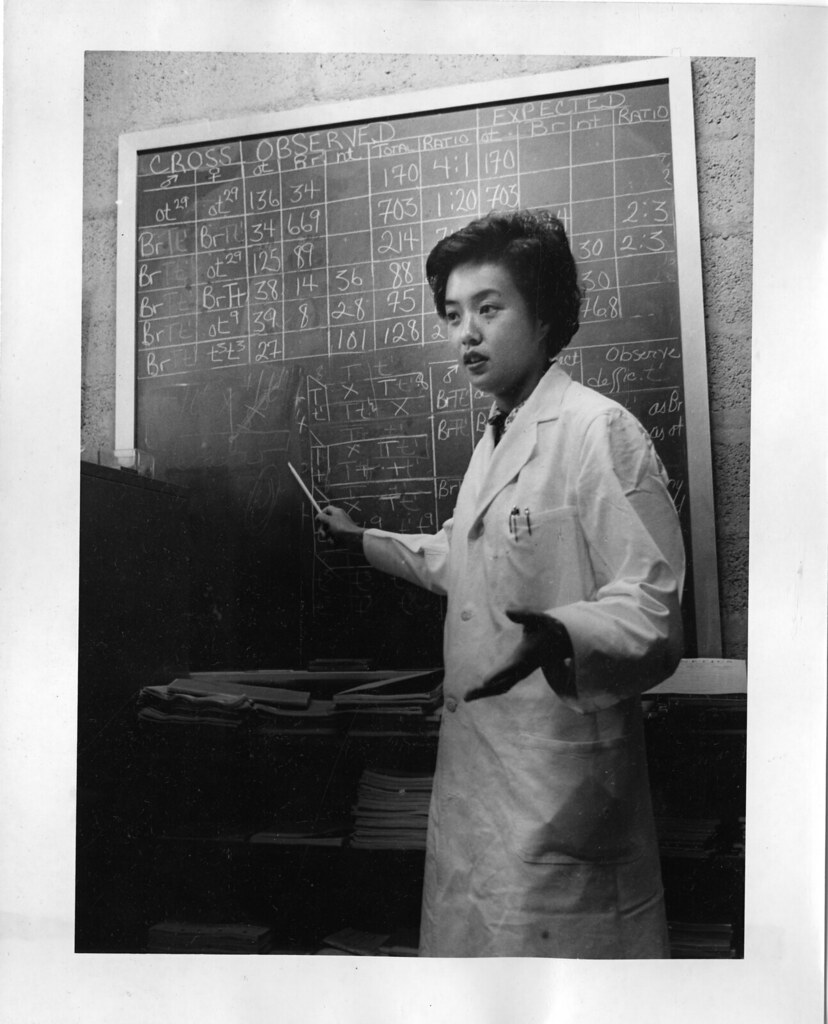 Anna Chao Pai (b. 1935)