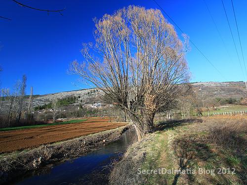 River Vrljika at it's start