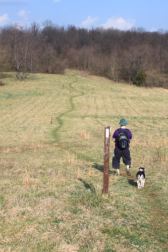 Manassas Gap Hike - Ryan and Henry Walk Through Field
