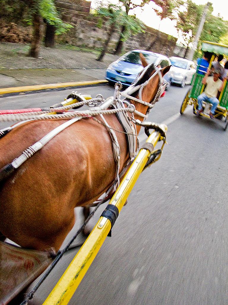 Manila_2012-02_Day04 (35)