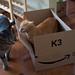 OMG, It's A BOX, February 15, 2012