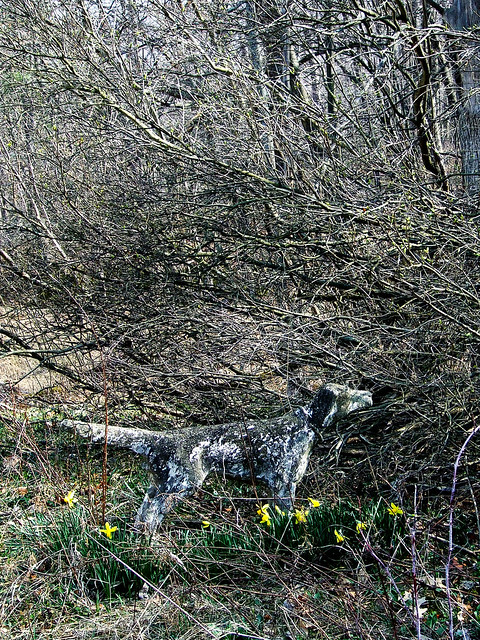 dog statue with daffodils
