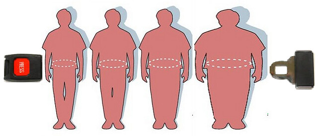 Obesity Health Risk
