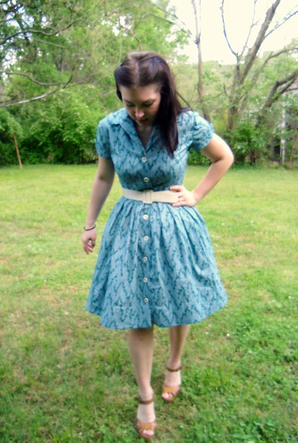 Shirtwaist Dress - with petticoat