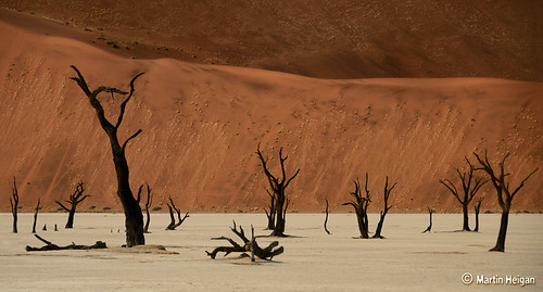 Dead Vlei Landscape by Martin_Heigan