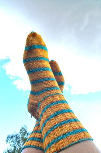 sunshine socks 3