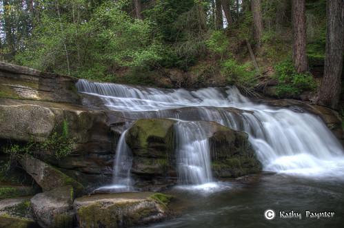 Bowen Park Waterfall by kathypaynter.com