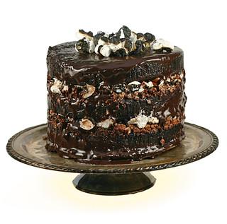 Chocolate Malt CakeSqr