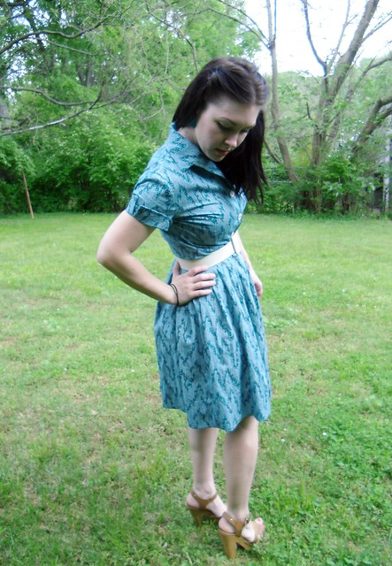 Shirtwaist Dress